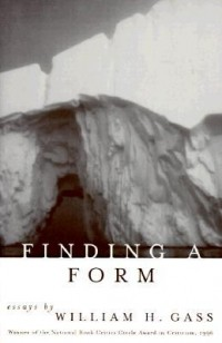 Уильям Гэсс - Finding a Form