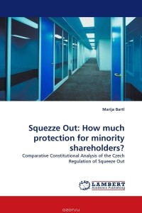 protecting interest of the minority shareholders Do you own some shares in a company did you buy the said shares because you thought the company has a great future.