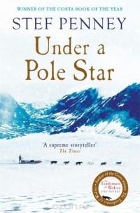 Stef Penney - Under a Pole Star