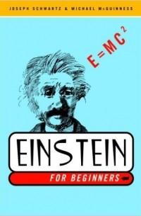 - Einstein for Beginners