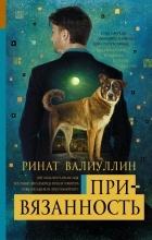 Ринат Валиуллин - Привязанность