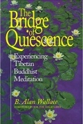 B. Alan Wallace - The Bridge of Quiescence. Experiencing Tibetan Buddhist Meditation