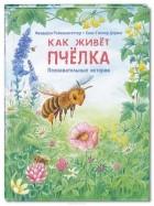Фридерун Райхенштеттер - Как живет пчелка. Познавательные истории