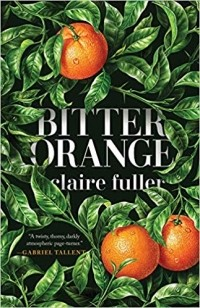 Claire Fuller - Bitter Orange