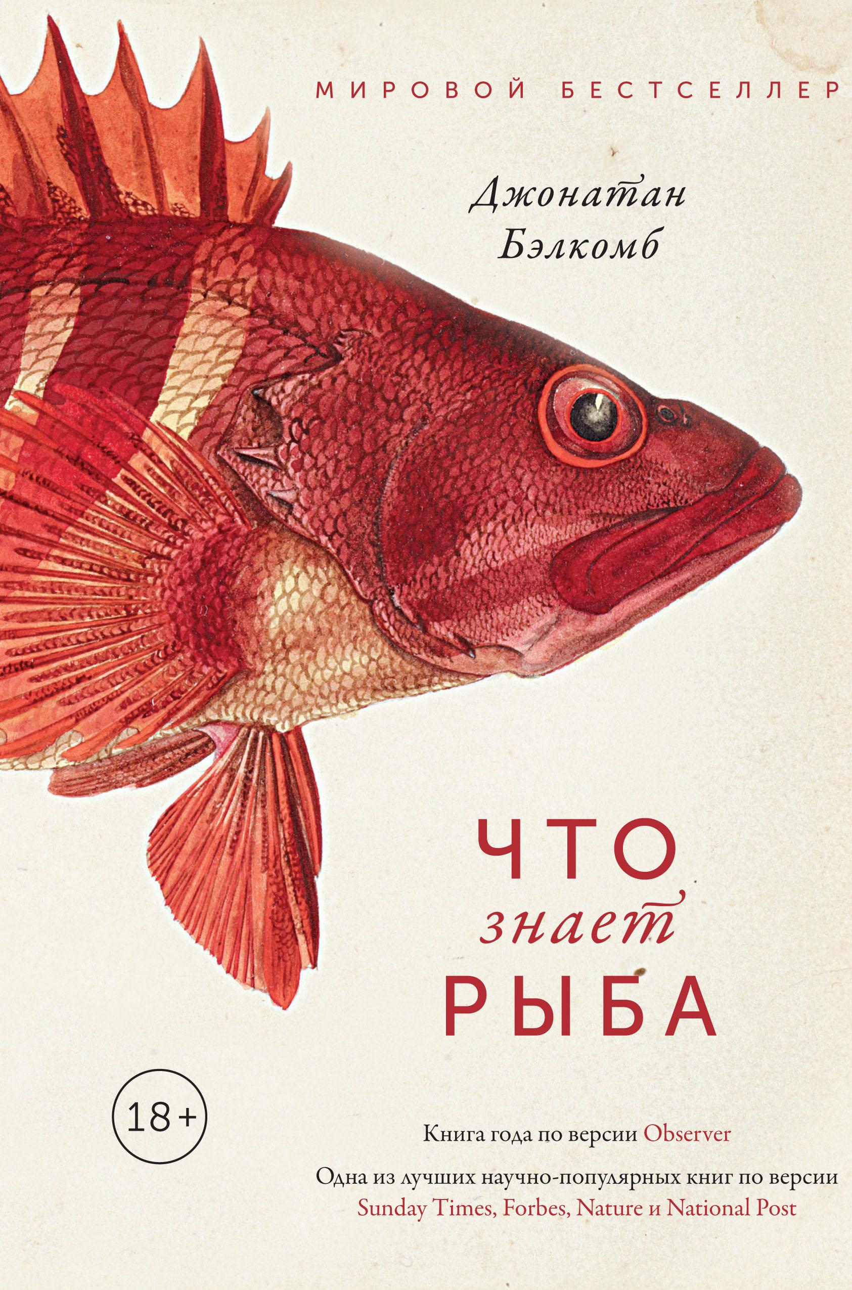 «Что знает рыба. Внутренний мир наших подводных собратьев» Джонатан Бэлкомб