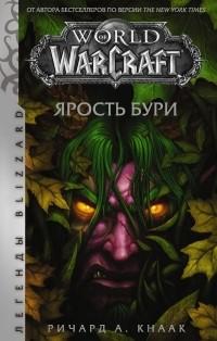 Ричард Кнаак - World of Warcraft: Ярость Бури