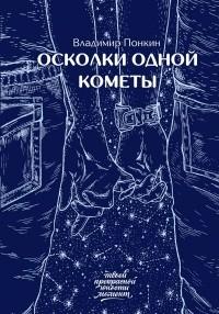 Владимир Понкин - Осколки одной кометы