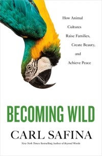 Carl Safina - Becoming Wild: How Animal Cultures Raise Families, Create Beauty, and Achieve Peace