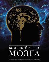 - Большой атлас мозга